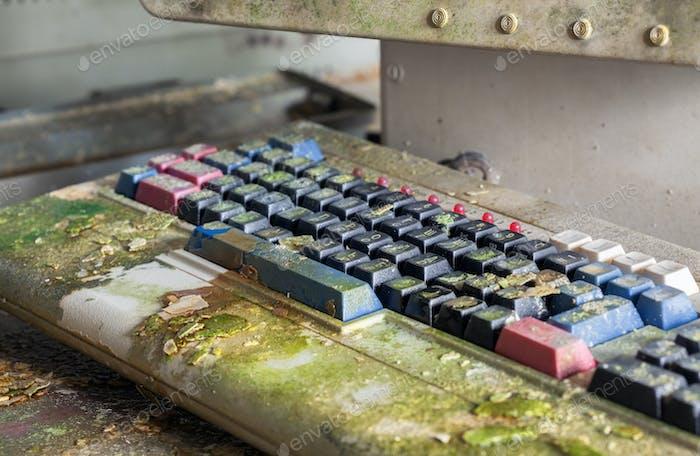 Retro-Computer-Tastatur mit Moos bedeckt