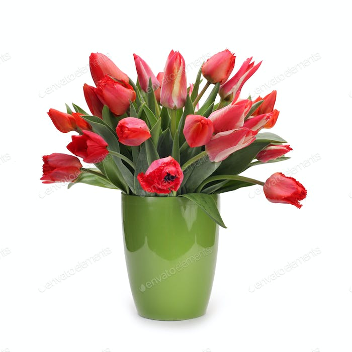 bouquet of tulip flowers