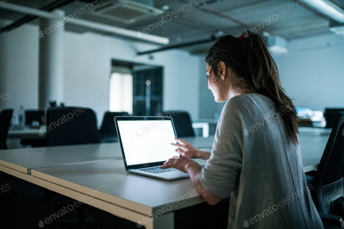 Young businesswoman with computer sitting in an office, working.
