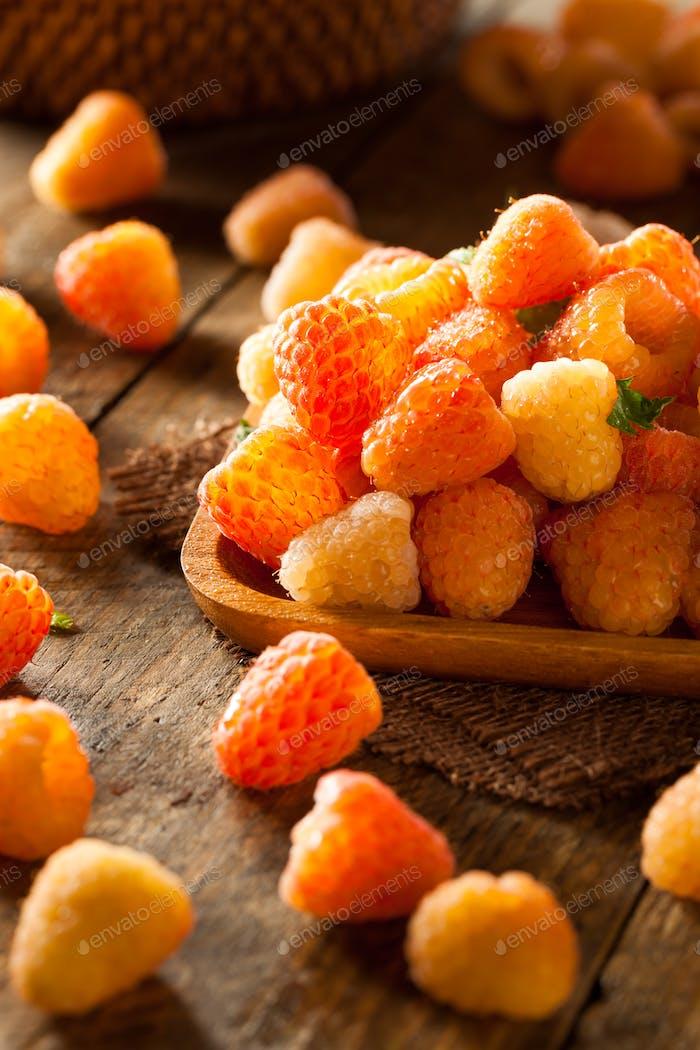 Raw Organic Orange Sunshine Raspberries