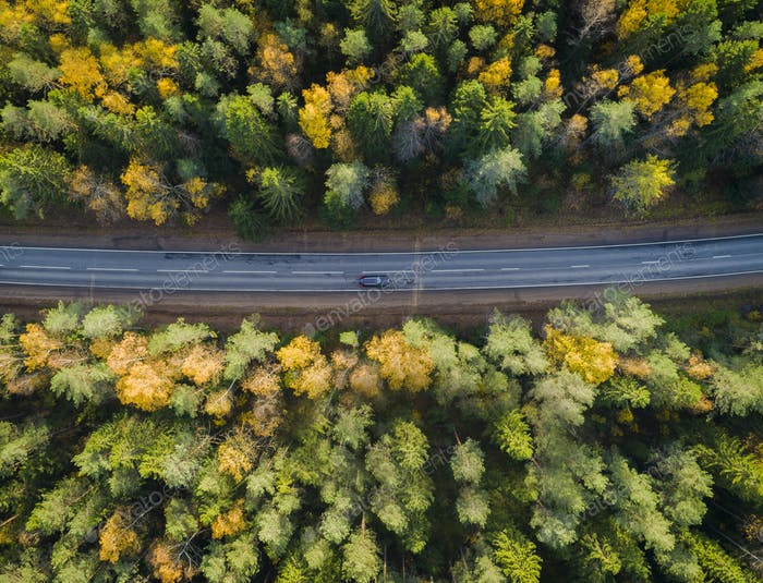 Aerial view of a car on the road