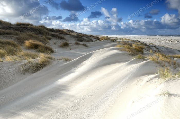 sand dunes in sunshine on coast
