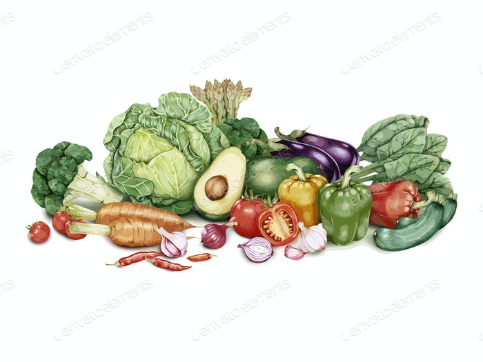 Hand drawn batch of vegetables