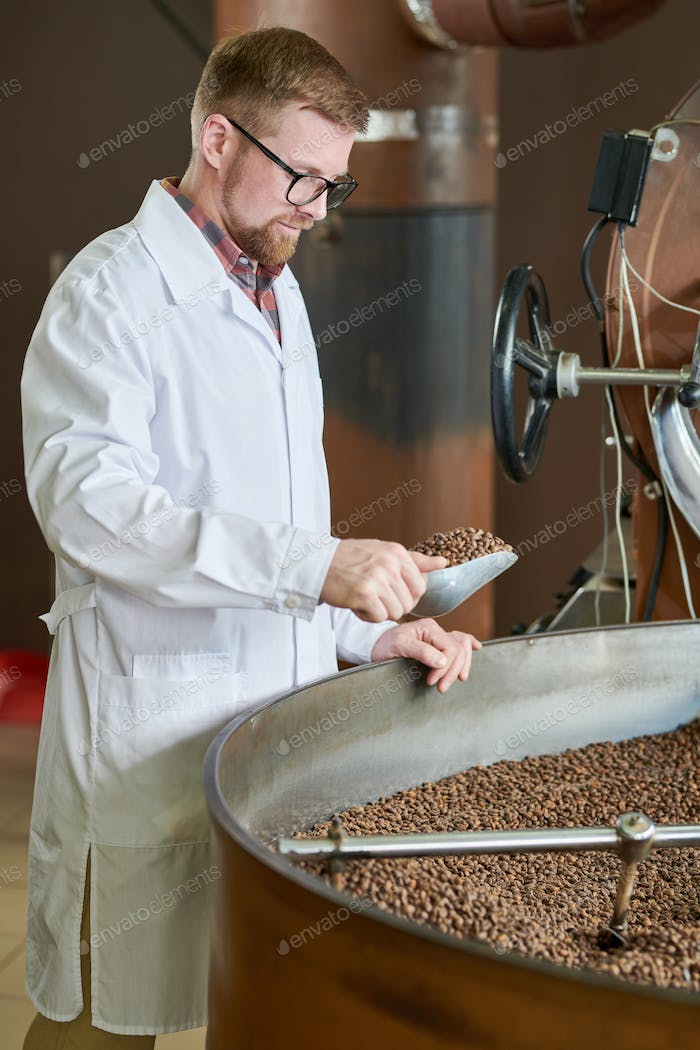 Young Man Roasting Coffee at Factory