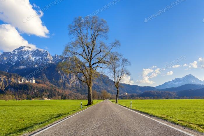 Schöne Landstraße mit Bäumen, buntes Gras in Bergen