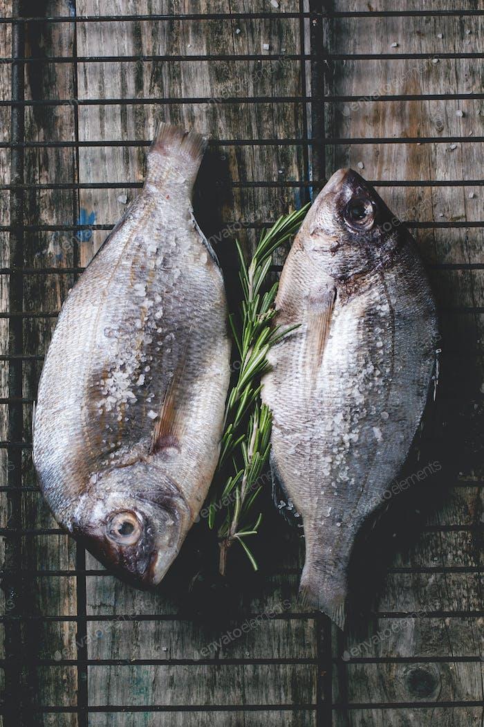Tow raw dorado fish with rosemary on grill