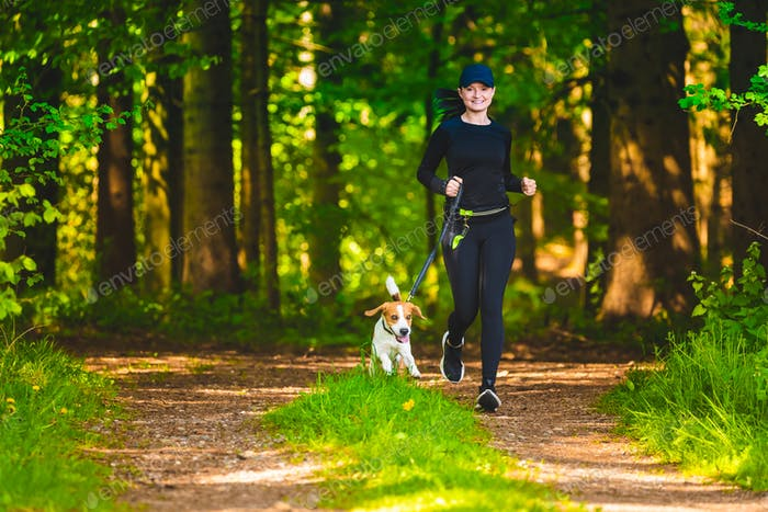 Girl walking with beagle dog outdoors in nature on a path in forest.