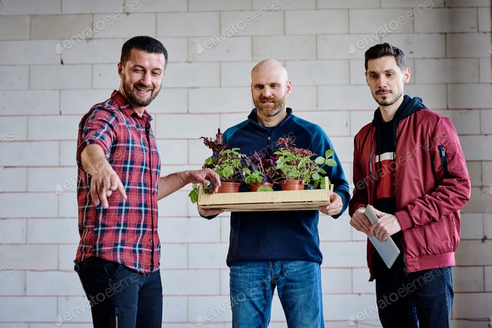 Three young workers choosing where to put green growing garden plants