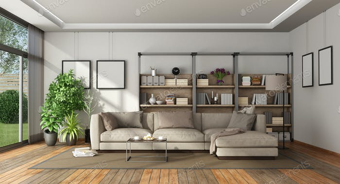 Modern living room with bookcase and sofa
