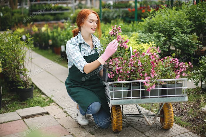 Pretty smiling florist in apron and pink gloves happily working with flowers in garden cart