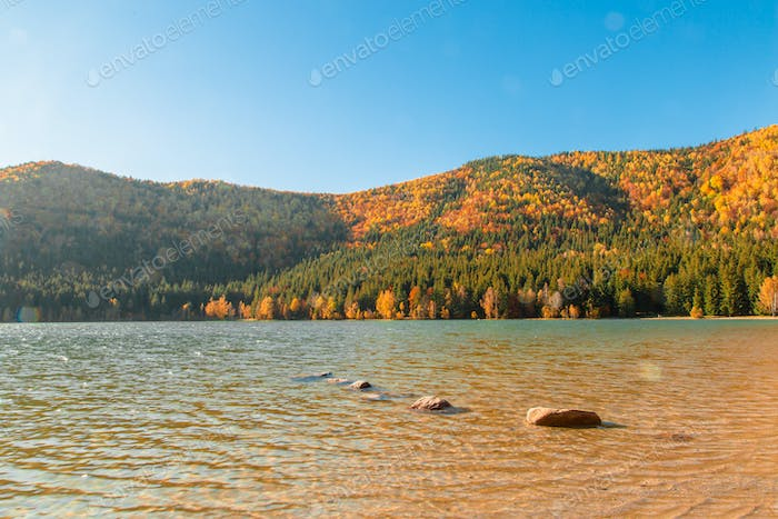 Autumn landscape with lake and forest