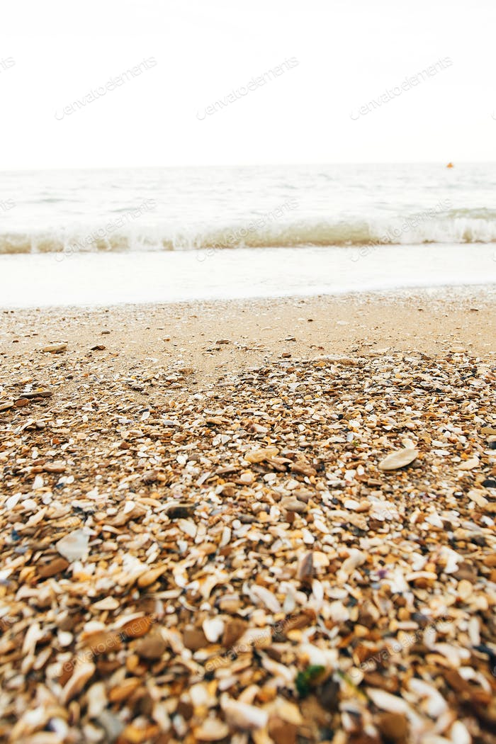 Beautiful sea waves foam closeup and sandy beach with seashells on tropical island