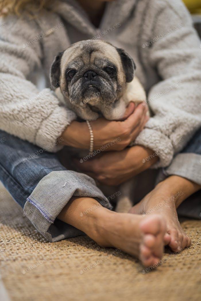 La gente humana y el concepto de amor al perro