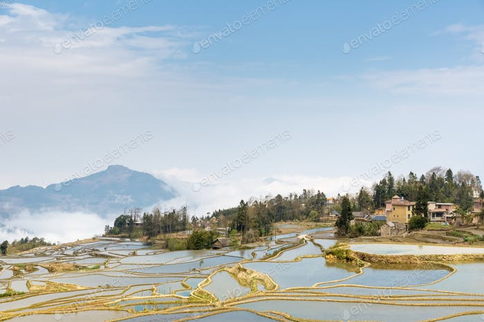 blau terrassierten Feld, schöne Yunnan Landschaft