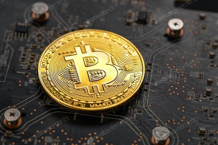 Bitcoin de oro en el hardware de la Ordenador de la Panel de circuito de la GPU de minería criptográfica