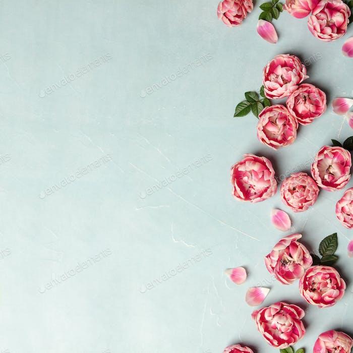 Flache lag dekorative Grenze von rosa Tulpen und grünen Blättern auf blauem Hintergrund