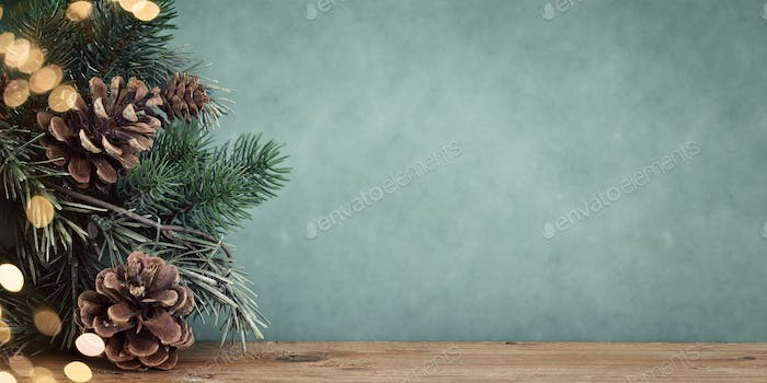 twig with pine cones bokeh background