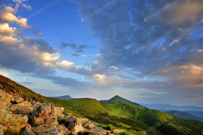 Beautiful summer landscape in the mountains. Sunset. Carpathian,