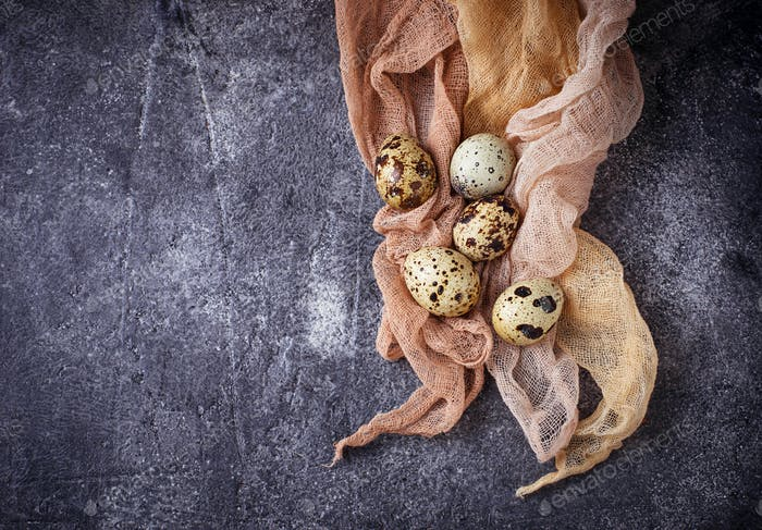 Quail eggs on concrete background