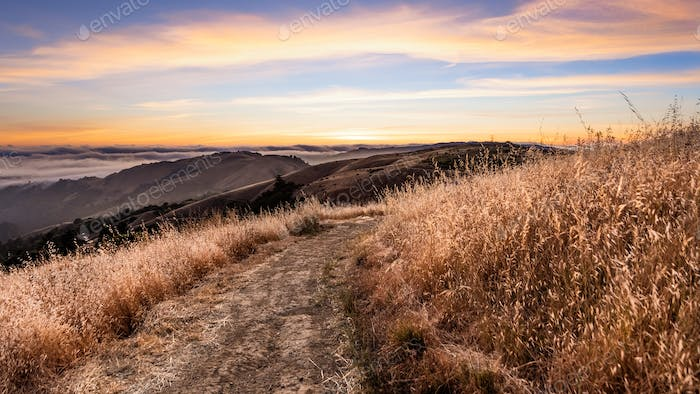Sunset view of hiking trail on the hills of Santa Cruz mountains; San Francisco Bay Area, California
