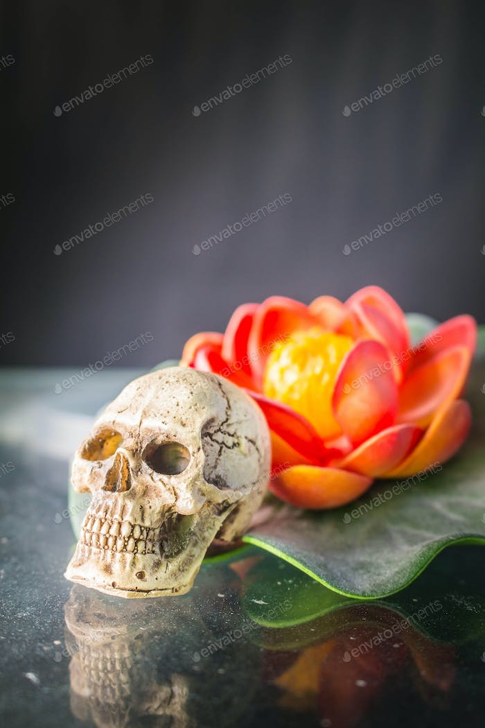 Skull and lilies
