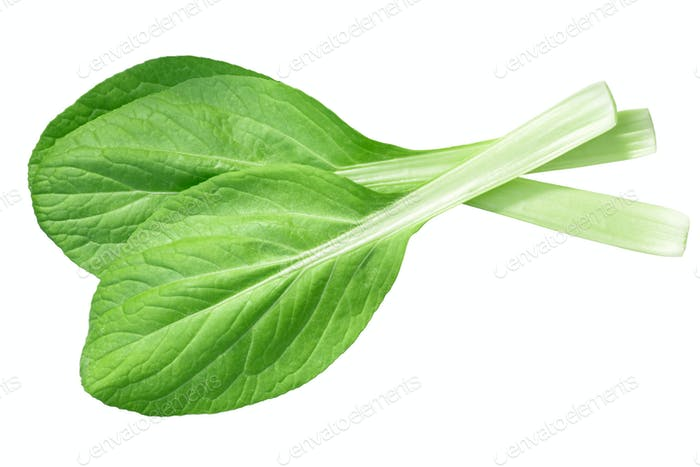 Bok choy chinese chard, top