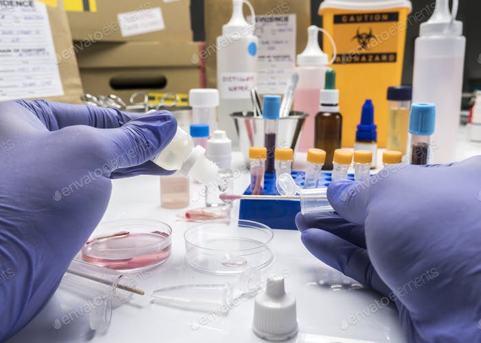 Specialized criminalistic police performs hematological analysis