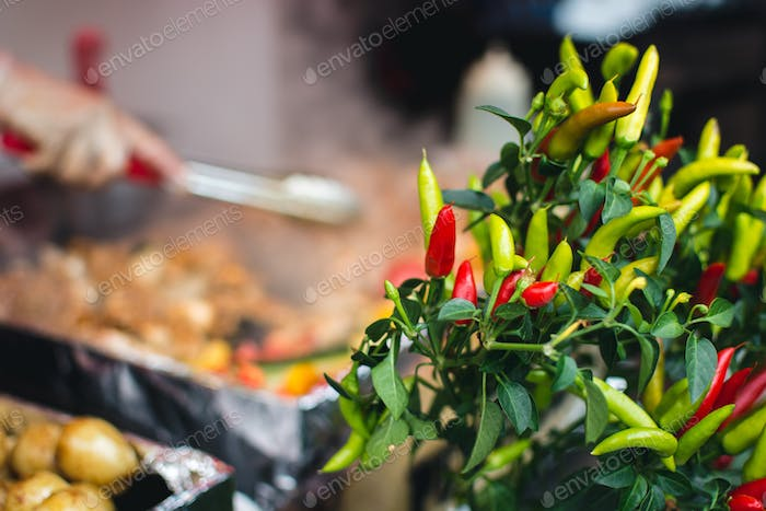 Colorful chilli peppers at street market