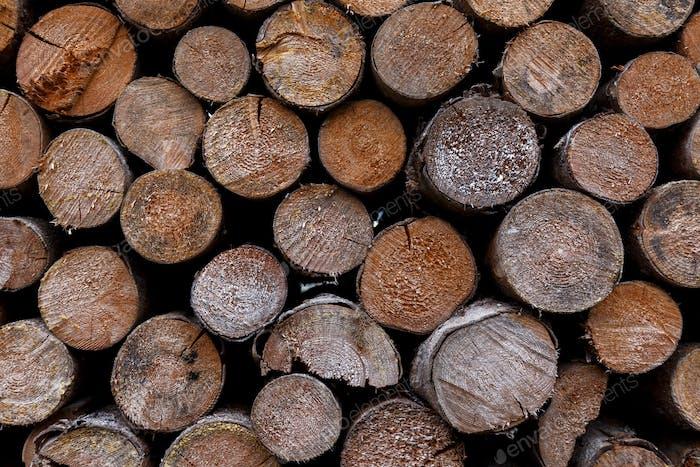 pila apilada de troncos de madera