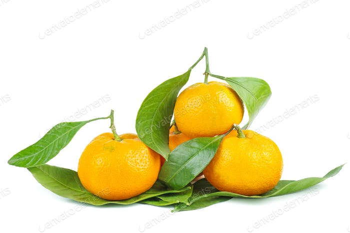 Mandarines, tangerine or clementine with leaves isolated on white background