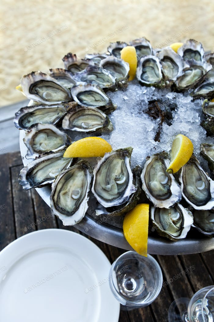 Plate of oysters in a French bistro