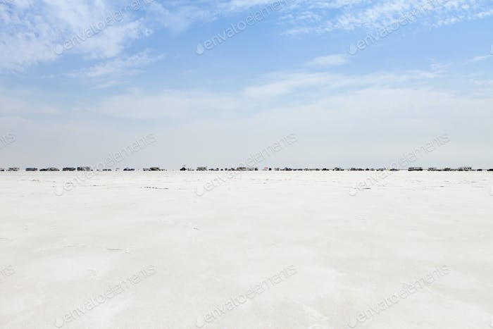 Spectators lined up on Bonneville Salt Flats during Speed Week