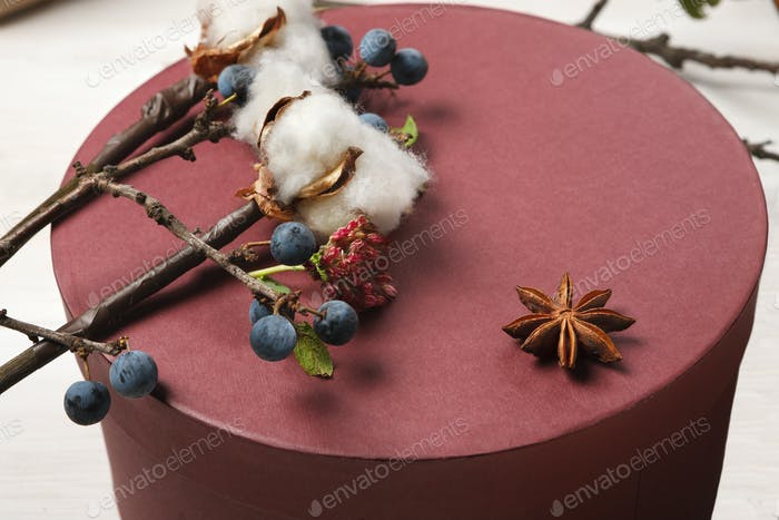 Autumn decorations, sloe and cotton flowers background