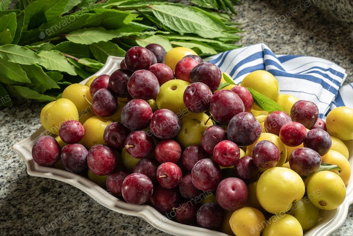Fresh organic red and yellow plums