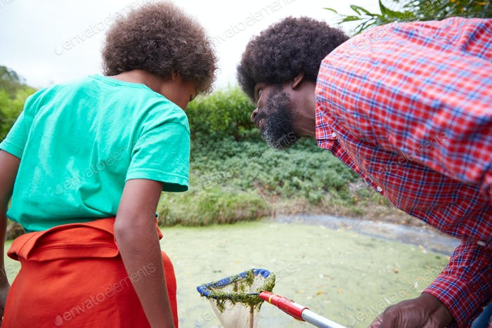 Adult Team Leader zeigt Junge auf Outdoor-Aktivität Camp wie zu fangen und zu studieren Teichleben