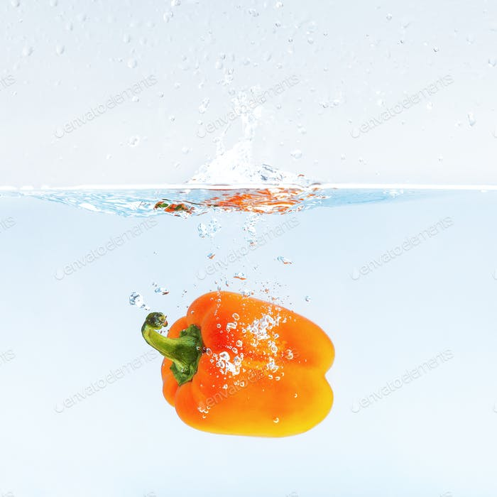 Colored orange paprika in water splashes on blue background