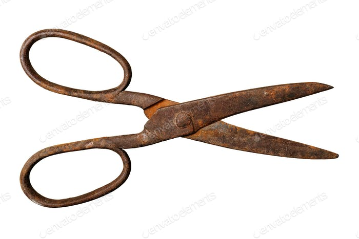 Old rusty tailor scissors