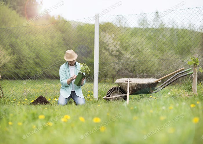 Junger Mann Pflanzung im Garten