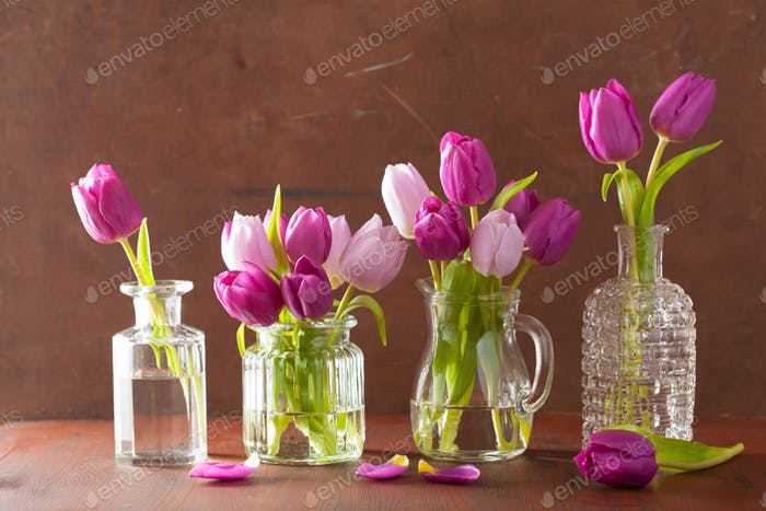 beautiful purple tulip flowers bouquet in vases