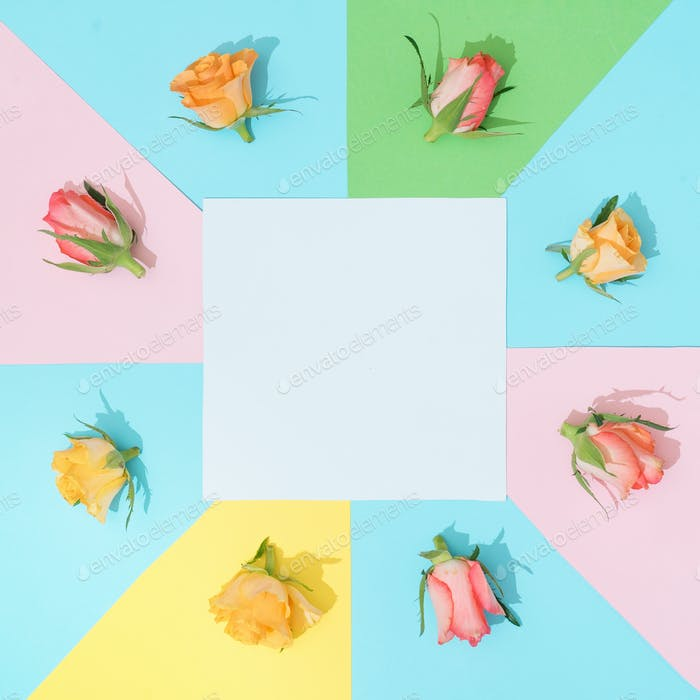 Thumbnail for Abstract minimal background in pastel colors with colorful roses. Minimal flowers flat lay