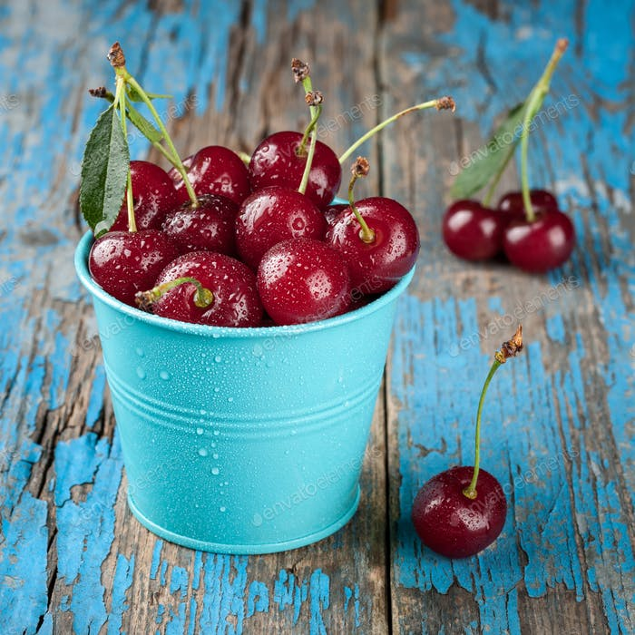 Ripe cherries in the blue bucket on wooden table