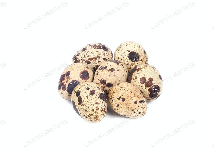 Fresh quail eggs.