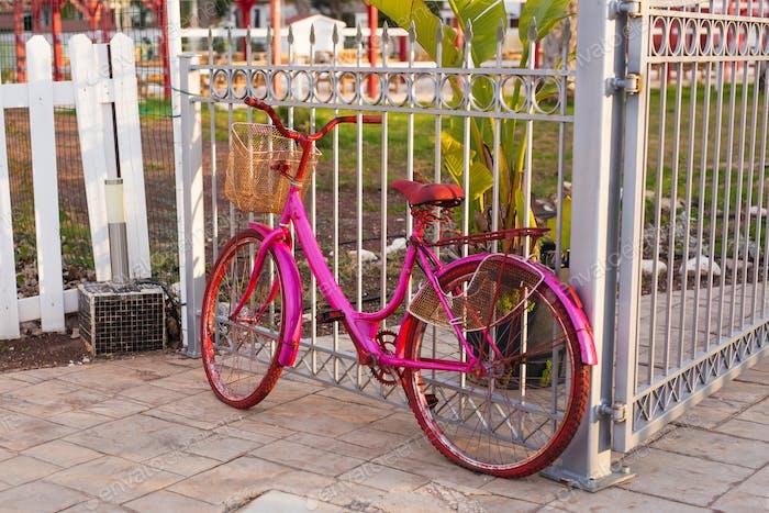 Vintage Bicycle on summer
