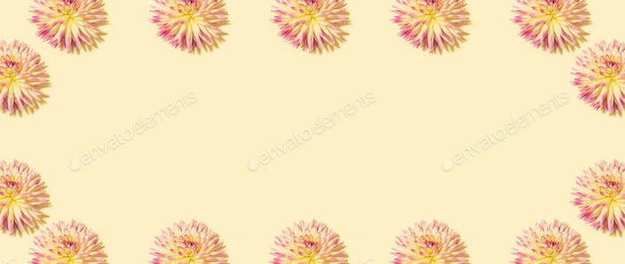 Floral pattern made of pink flowers over pastel yellow background. Festive spring and summer frame