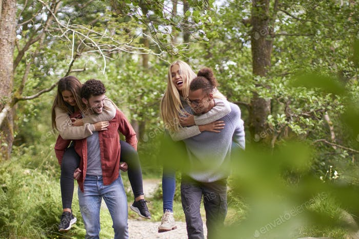Four smiling young adult friends walking in a forest during a hike