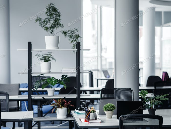 Modern cozy loft office interior and new normal. A lot of plants in the workers room with tables