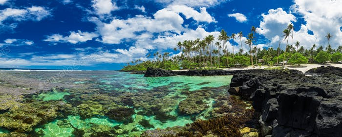 Coral reef for snorkeling on south side of Upolu, Samoa Islands