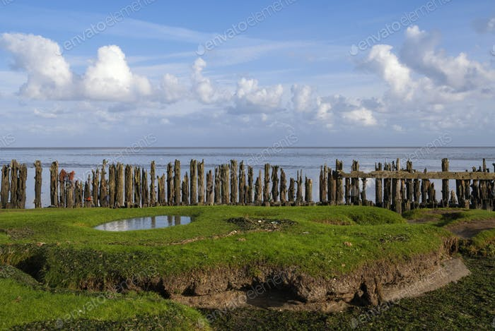 Row of poles in the Waddensea