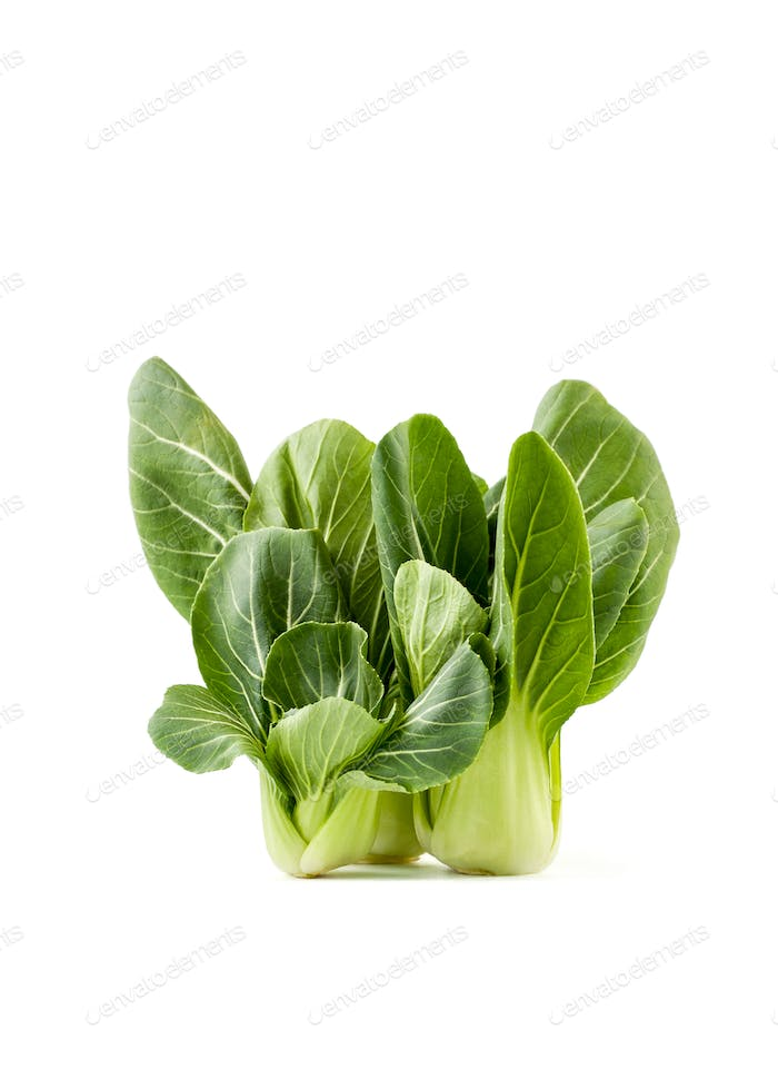 Cabbage Pak-choi (salad) on a clean white background. Isolated.