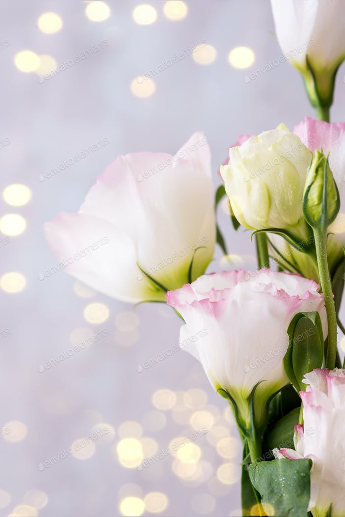 Eustoma flowers near bokeh on light background. Blank for postcards
